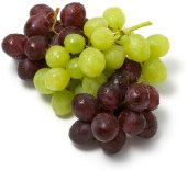 grapes-saidaonline